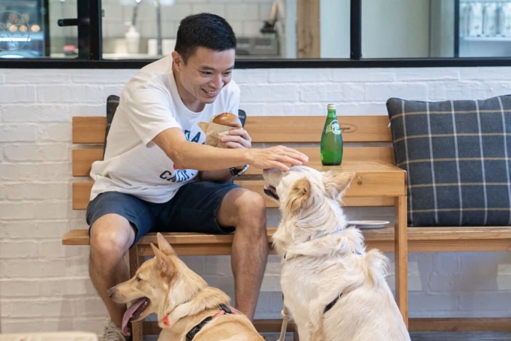 Dog Friendly Restaurants Whiskers N Paws